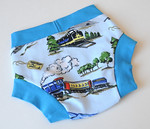 "Size 2/3 Children's Dundies- ""choo choo""  (can be used with our potty training insert)"